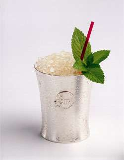 The Perfect Mint Julep Cocktail Photo
