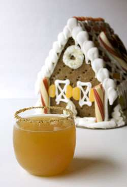 Gingerbread Apple Cocktail Cocktail Photo