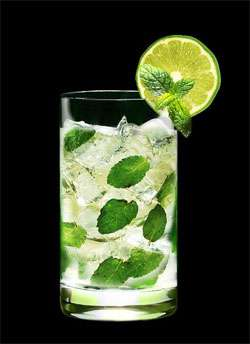 Mojito on IS Cocktail Photo