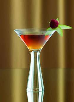 Natural Vanilla Manhattan Martini Photo