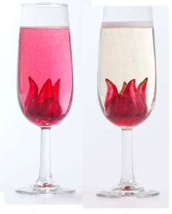 Classic Wild Hibiscus Champagne Cocktail Cocktail Photo