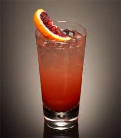 Blood Orange Collins Cocktail Photo