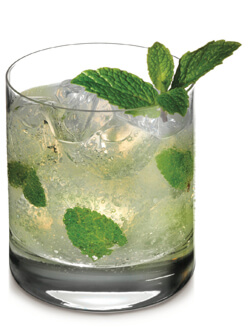 Moon Mountain Mother Earth Mint Cocktail Photo