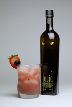 Red, White, and B-Lucid Punch photo