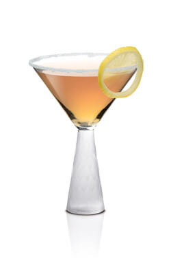 SKYY Summer Palmer Martini Photo