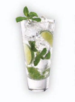 Herradura Mojito Cocktail Photo