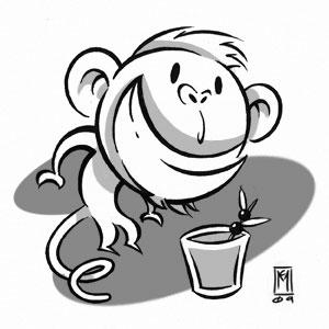 Zamboanga Monkey Tail Cocktail Image