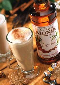 Monin Gingerbread Syrup Photo