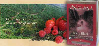 Numi Organic Berry Black Darjeeling Tea Photo