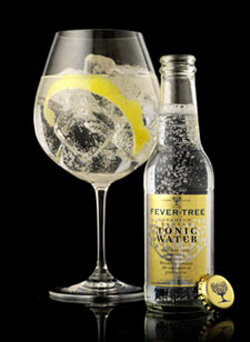Fever Tree Indian Tonic Water Photo